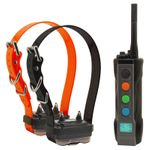 shop Dogtra Edge Remote Training Collar 2-dog