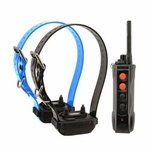 shop Dogtra Edge RT Remote Training Collar System -- 2 Dog