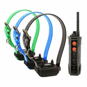 shop Dogtra Edge RT Remote Training Collar System -- 3 Dog