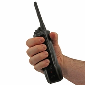 shop Dogtra Edge RT Transmitter in Hand