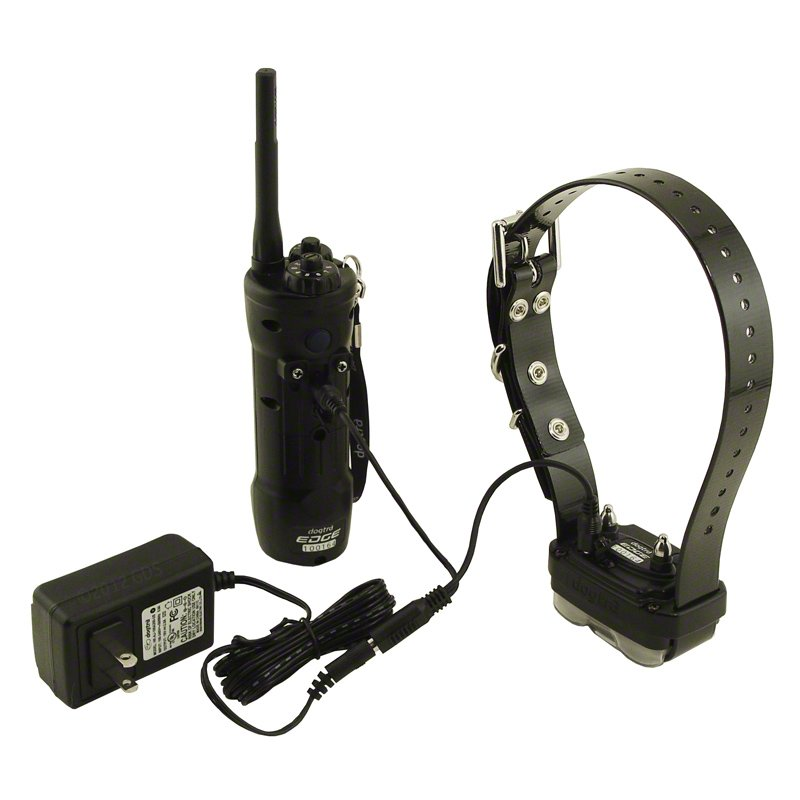 Dogtra Edge Transmitter and Collar on Charger