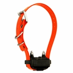 shop Dogtra iQ PLUS Additional Collar / Extra Receiver