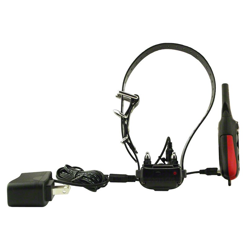 Dogtra iQ Plus Collar and Transmitter on Charger