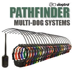 shop Dogtra Pathfinder Multi-Dog Systems
