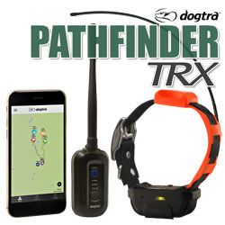 shop Dogtra Pathfinder TRX GPS Dog Tracking COMBO