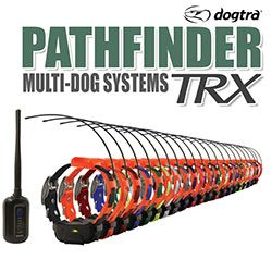 shop Dogtra Pathfinder TRX Multi-Dog Systems