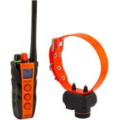 shop Dogtra T&B DUAL Training and Beeper Collar