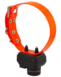 Dogtra T&B DUAL Training and Beeper Collar