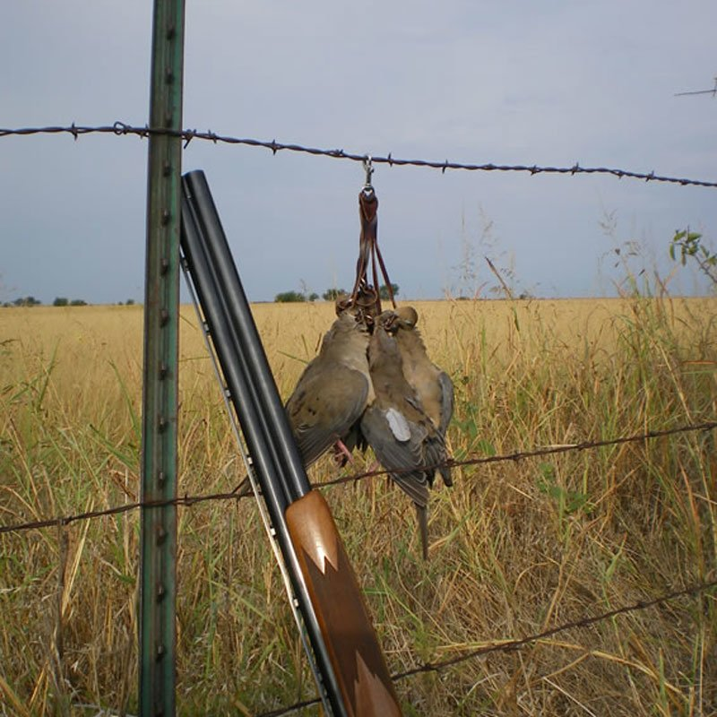 Dove Quail Holder Lifestyle on fence