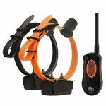 shop DT Systems H2O 1850 PLUS Expandable w/ Beeper 2-Dog