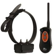 shop DT Systems H2O PLUS Series Expandable Training Collars