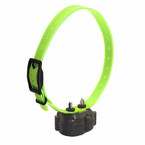 DT Systems Micro iDT PLUS Add-On Collar with Green Strap