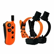 shop DT Systems R.A.P.T. 1450 Upland with Beeper 2-dog Combo