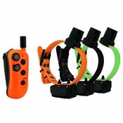 shop DT Systems R.A.P.T. 1450 Upland with Beeper 3-dog Combo