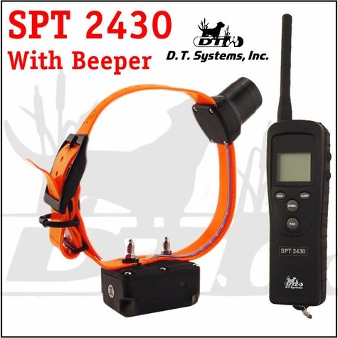 DT Systems SPT 2430 w/ Beeper 1-dog