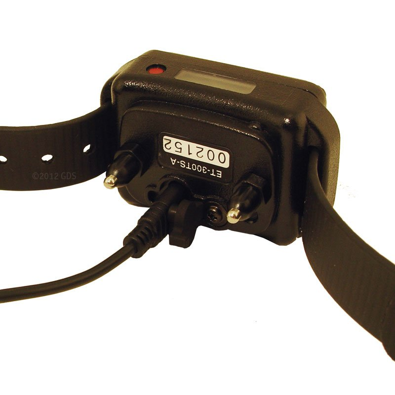 Educator ET-402TS Collar on Charger