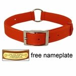 shop ORANGE Scott Field-Grade Treated Nylon Center-Ring Safety Dog Collar