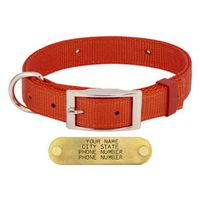 shop 1 in. Field-Grade Treated Nylon D-End Dog Collar