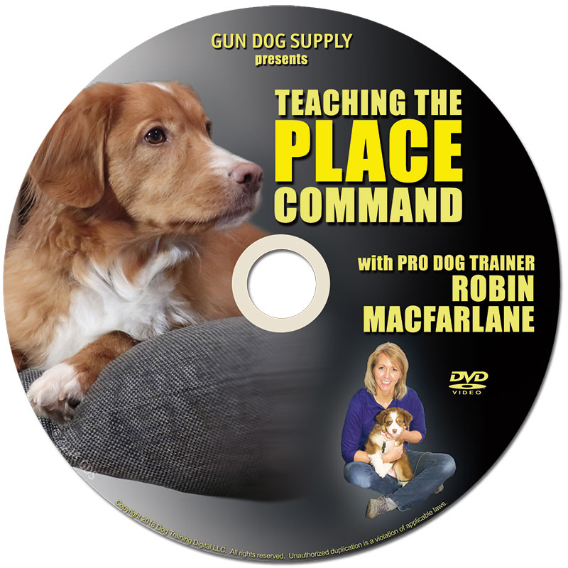 FREE Teaching the Place Command DVD