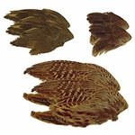shop Game Bird Wings Variety Pack