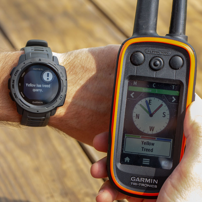 Garmin Instinct Watch Detail w/ Alpha - Yellow Treed