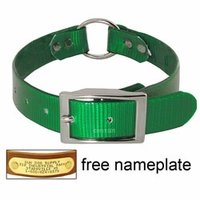 shop GREEN 1 in. Day Glow Center Ring Collar
