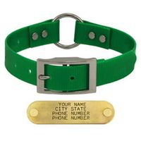 shop GREEN 1 in. Day Glow Center-Ring Collar