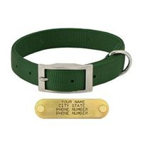 shop GREEN 1 in. Double-Ply Standard Nylon Dog Collar