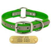 shop GREEN 1 in. Reflective Center Ring Collar