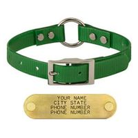 shop GREEN 3/4 in. Center Ring Day Glow Collar