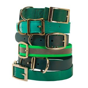 shop Green Dog Collars