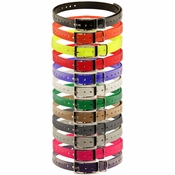 shop HiFlex 3/4 in. Universal Square Buckle Replacement Collar Straps