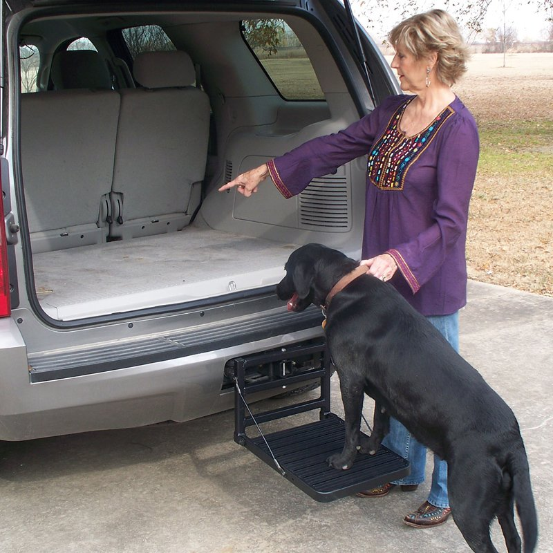 Hitch Up Dog Step In Use