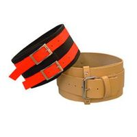 buy  Hog Dog Hunting Collars