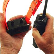 shop How to Program the Collar Receiver for Multi-Dog Operation on the SD-2500
