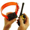 shop How to Program the Collar Receiver for Two or Three-Dog Operation on the SD-1800 and SD-2000