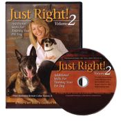 shop Just Right! Volume 2 with Robin MacFarlane DVD