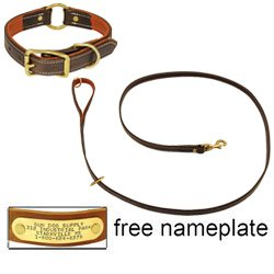 shop K-9 Komfort Premium Deluxe 3/4 in. x 6 1/2 ft. Leash and 1 in. Center Ring Collar -- Brown Latigo with Rust Cowhide Liner