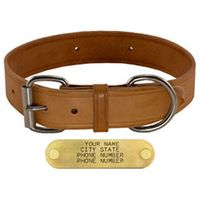 shop 1-1/2 in. Harness Leather Standard Dog Collar