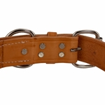 shop K9K 1 1/2 Inch Harness Leather Standard Back of  Buckle Detail
