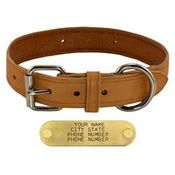 shop 1-1/4 in. Harness Leather Standard Dog Collar