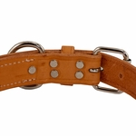 shop K9K 1 1/4 Inch Harness Leather Standard Back of  Buckle Detail