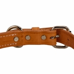 shop K9K 1 Inch Harness Leather Standard Back of Buckle Detail