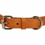 shop K9K 1 Inch Harness Leather Standard Front of Buckle Detail