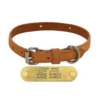 shop 3/4 in. Harness Leather Standard Dog Collar