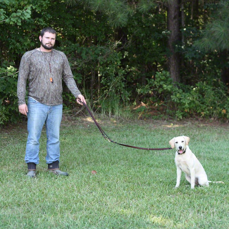 K9K 9 Way Lead 5' Configuration