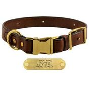 shop K-9 Komfort Quick Release 1 in. Leather Collar