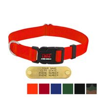 shop 1 in. Tuff Lock Quick Release Nylon Dog Collar