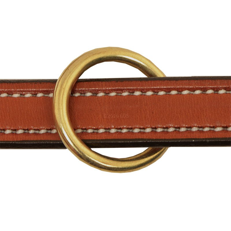 Leash Center Ring Detail