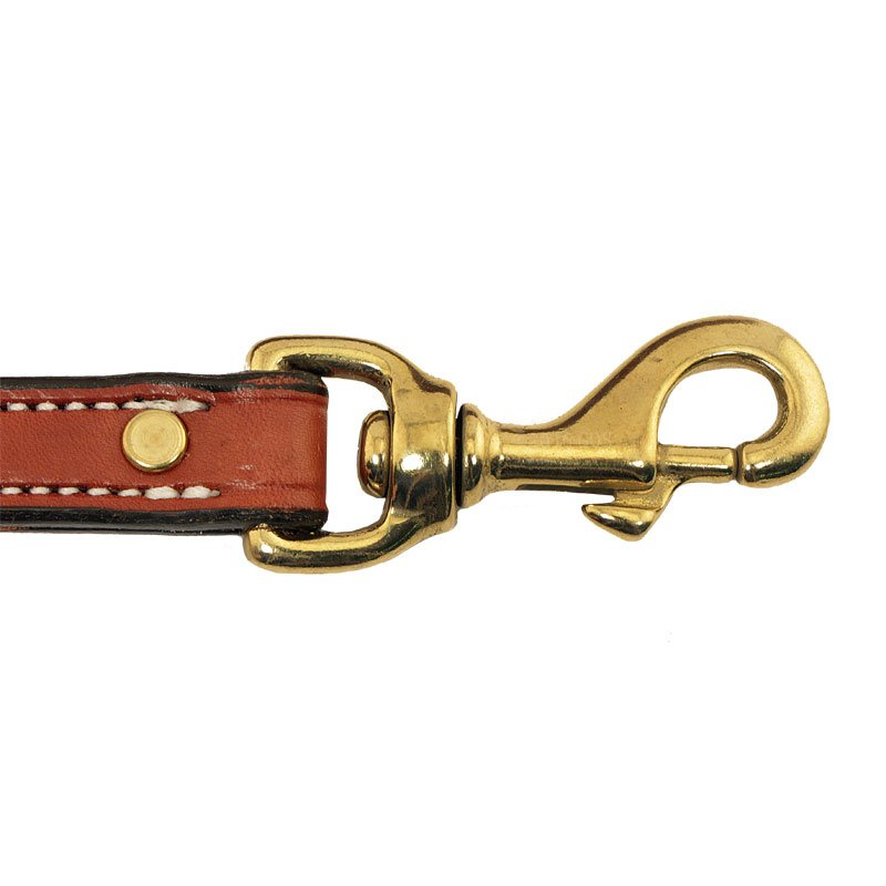 Leash Hardware Detail